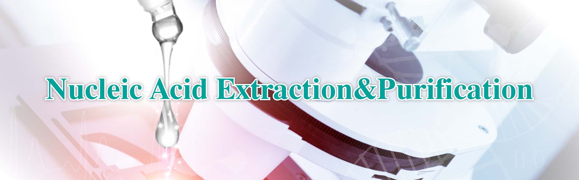 AcceGen excellent nucleic acid extraction and purification kits for high-quality and quantity DNA/RNA